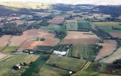 Découvrez le nouveau site Fruitiers de Chapelan